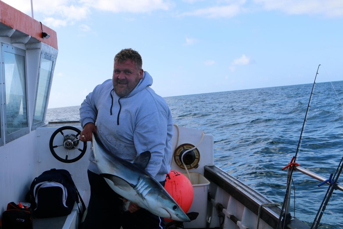Porbeagle shark fishing snapper charters snapper charters for Shark fishing charters