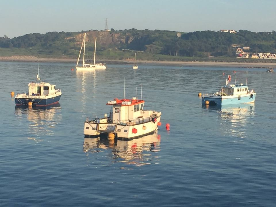 Find out more about channel islands fishing trips